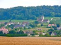 Champagne luxury private tour - soul and spirit of champagne - one night in *****hotel in Reims