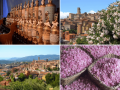 Deep Inside France Tour - Part 2: Provence & Riviera