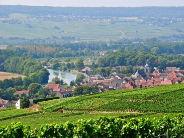 Epernay Picturesque, Champagne Day tour, 7 Champagne tasting & lunch - Monday, Wednesday & Friday