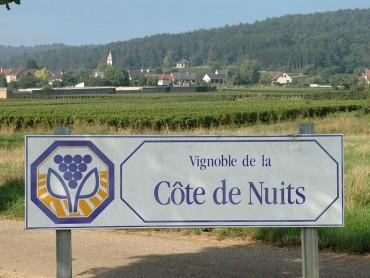 Côte de Nuits - Burgundy Wine Tour