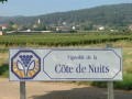 Côte de Nuits - Burgundy Wine Tour - 12 wines tasting - Tuesday, Thursday & Saturday