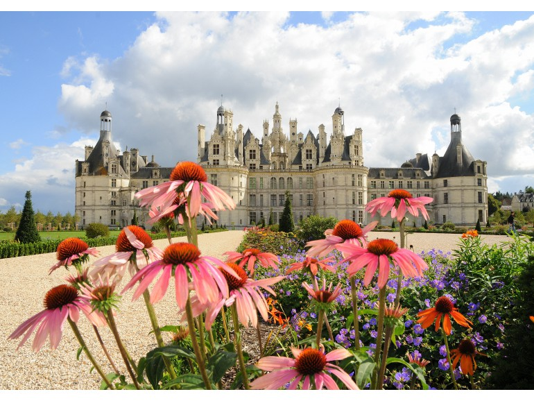 Loire Valley Private Day Tour, exclusive guide & transportation, Chateaus of Chenonceau & Chambord, Caves Ambacia tour & tasting