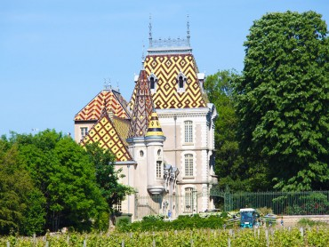 Burgundy Wine Tour + hotel Le Cep**** (Beaune) Heritage & Wines