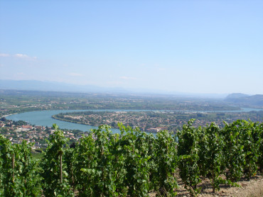 Reims & Epernay, The Bubbles Day, cata de 3 champagnes, Moet & Chandon / Taittinger, de Lunes a Domingo
