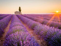 Self-guided tour from Avignon in Provence and Riviera - 7 days / 6 nights in 4*hotels