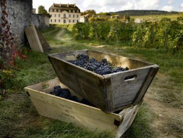 Excursión privada castillos del Loira, Cognac y Bordeaux 7 días y 6 noches.
