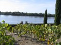 Private Luxury escorted tour - Must-taste Loire Valley Wine - Vouvray - Bourgueil - Chinon