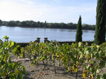 Private luxury escorted tour - Must see and must taste -Chenonceau - Chambord - Vouvray and Chinon wines