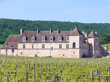 Burgundy small group Day Tour - Grands Crus route, tasting 10 wines in family domains, expert wine guide, Tue to Sat