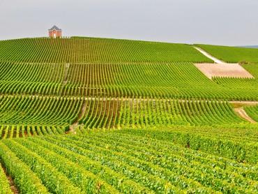 Roteiro privado luxoso: tour de vinhos ABC Alsace, Borgonha, Champagne - 8 dias e 7 noites em hoteis luxosos