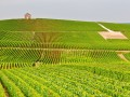 Private Luxury Wine tour: The A, B ,C: Alsace, Burgundy and Champagne wine tours - 8 days and 7 nights in luxury hotels