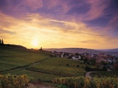 CHAMPAGNE SMALL GROUP TOURS 2018