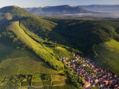 ALSACE SMALL GROUP TOURS