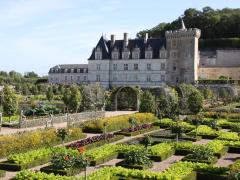 Roteiros de vinhos privados em França